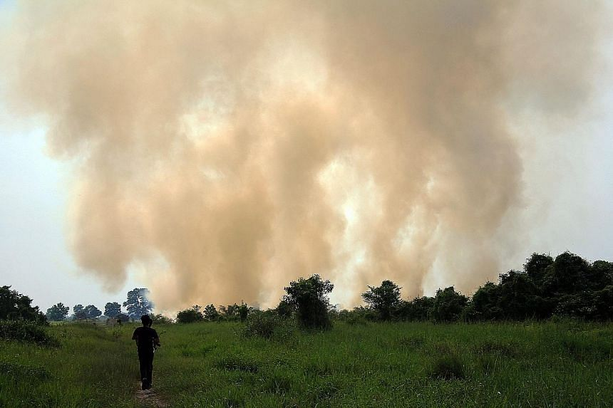 Smoke billowing from a fire in Muara Fajar village near Pekanbaru last Thursday. Around 1,000 firefighters have been deployed to put out fires in affected areas since a high-alert status was declared last week. Three helicopters have also been tasked