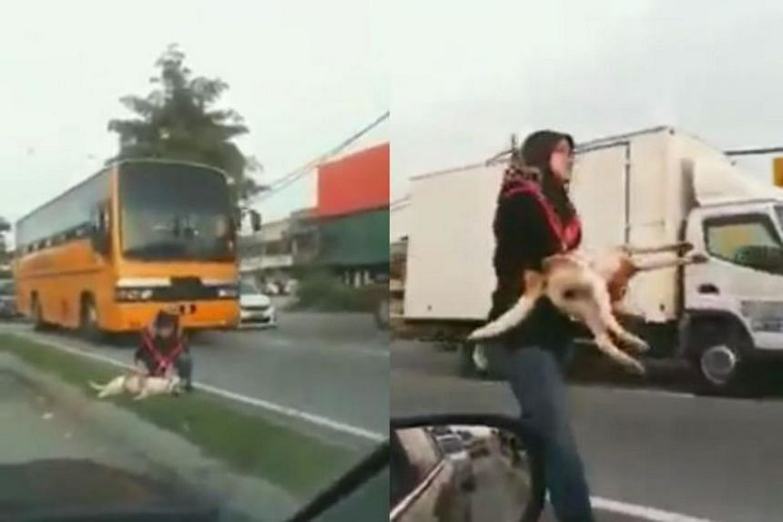 Screengrabs from the video showing the woman carrying the dog to safety.