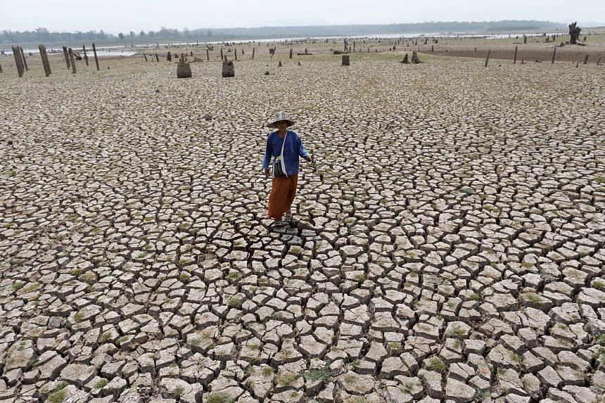 A villager standing on land that used to be a village. The village in northern Thailand's Lampang province, which had been underwater since the Mae Chang reservoir was built in 1982, has re-emerged after the water in the reservoir dried up.