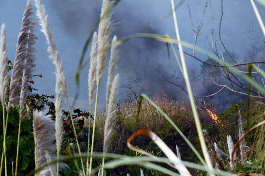 A forest fire in Chiang Rai in early March. Firefighters say it was probably set off by hunters trying to ferret out wildlife.