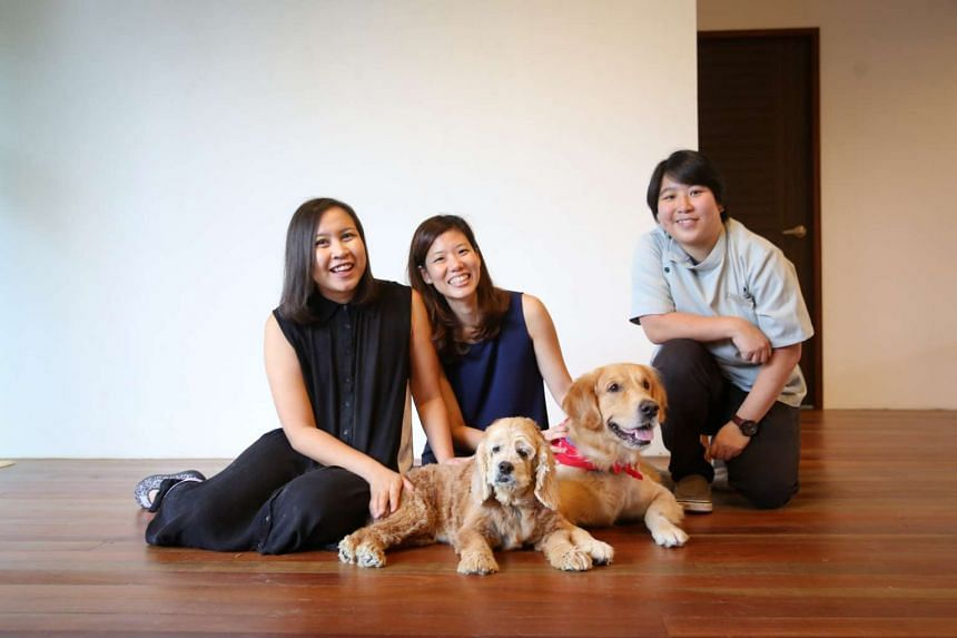 Ms Emmeline Ong (centre) and her golden retriever Lance came to the aid of Ms De Cruz (far left) and her dog Sasha last September when the cocker spaniel was in urgent need of a blood transfusion. With them is Dr Fong from the Mount Pleasant Vet Cent