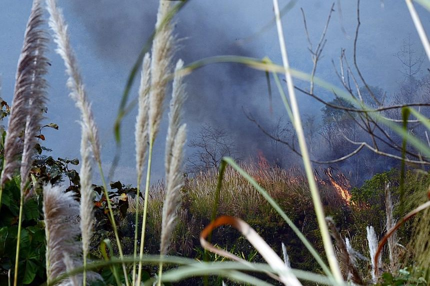 A forest fire in Chiang Rai early this month. Firefighters say it was probably started by hunters trying to ferret out wildlife.
