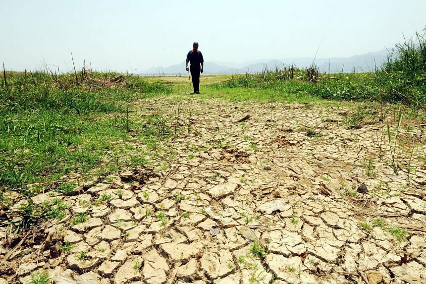 Drought conditions in Malaysia's northern state of Perlis, which saw temperatures of 39.5 deg C on Sunday, on the day of the equinox.