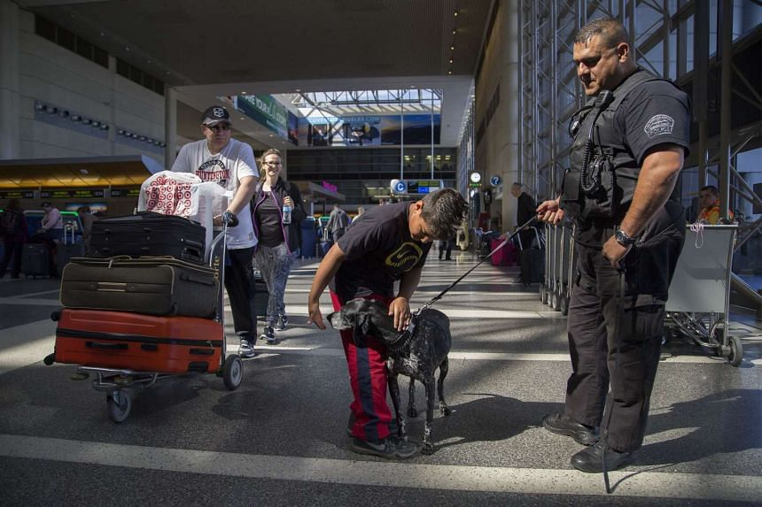 A boy petting a police dog at Los Angeles International Airport on March 22.