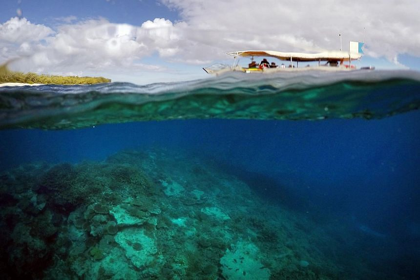 A tourist boat floats above an area called the Coral Gardens located off Lady Elliot Island in Queensland, Australia.