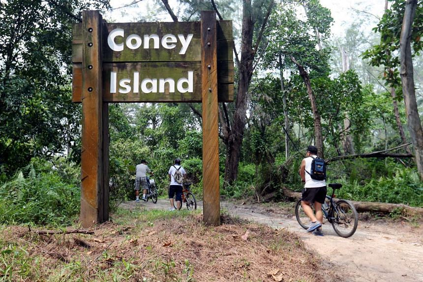 A new Outward Bound Singapore campus will be located on Coney Island.