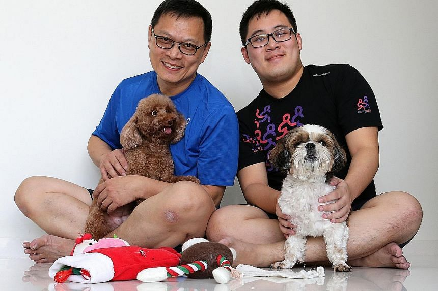 Mr Patrick Soh (left), 55, cuddles his toy poodle, while his son, Mr Dominic Soh, holds their shih tzu, which his parents bought for companionship after the NTU student and his sister moved to hostels.