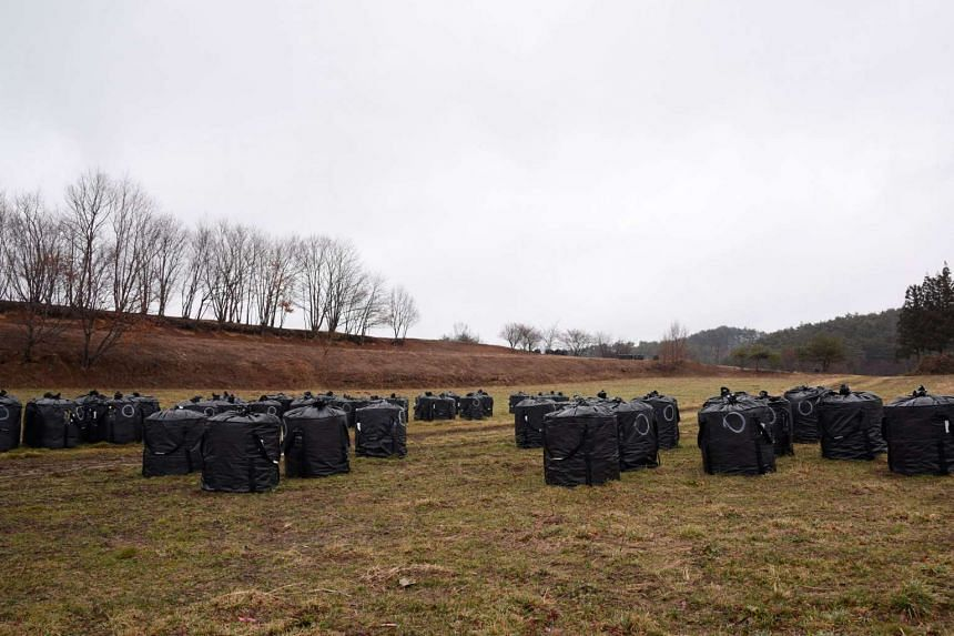 Once considered among the most beautiful villages in Japan, the farmlands of Iitate are now dotted with black bags - called 'flexible container bags'  - holding contaminated soil.