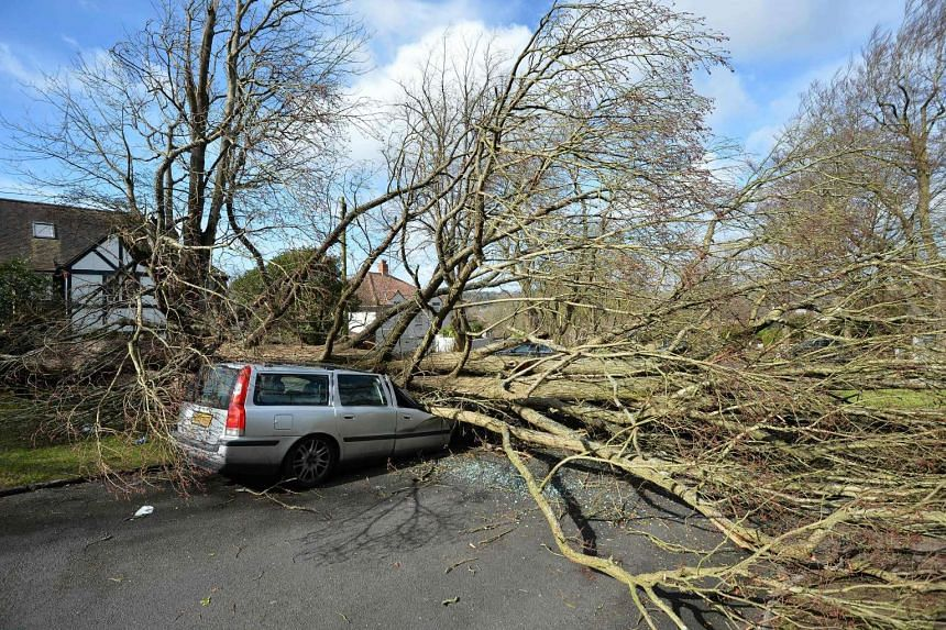 A tree that fell in high winds brought by Storm Katie lies across a car in a street in Brighton on March 28, 2016.