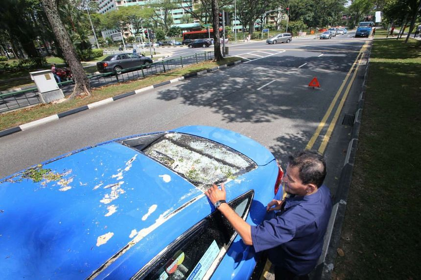 A man brushing off glass from the smashed windscreen of a taxi after a tree fell on it on March 28, 2016.