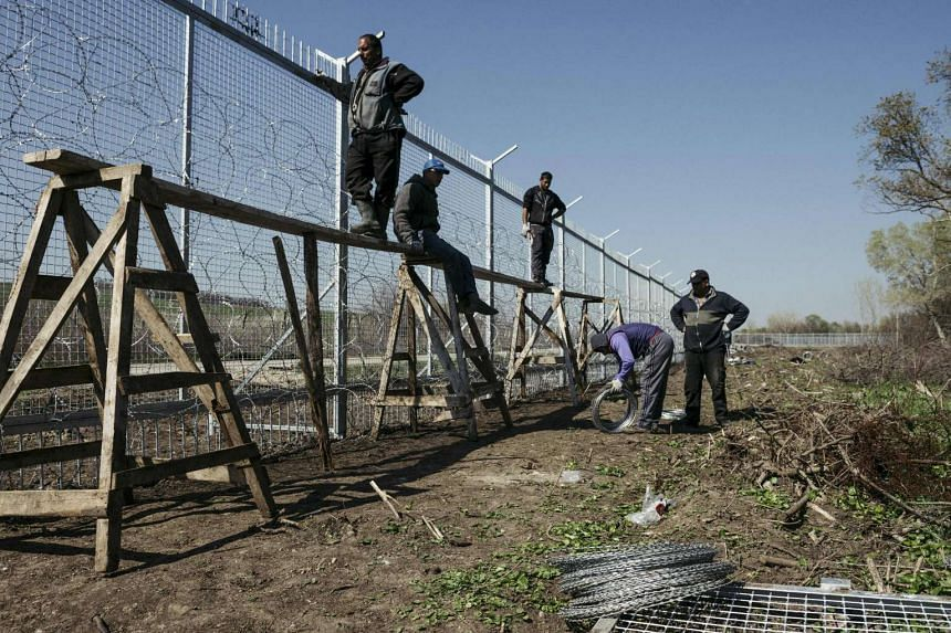 Workers attach barbed wire to a border fence to prevent illegal crossings by migrants at the Bulgarian-Turkish border, near the Bulgarian village of Shtit.