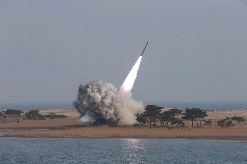 An undated handout by the North Korean news agency KCNA shows the test-firing of new-type large-caliber multiple launch rocket system by the North Korean military.
