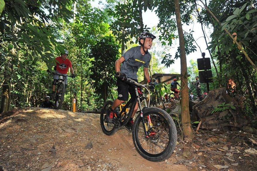 More than 100 cyclists tried out the new 1.6km mountain bike trail at Chestnut Nature Park (South) yesterday, and many were pleased with the experience.
