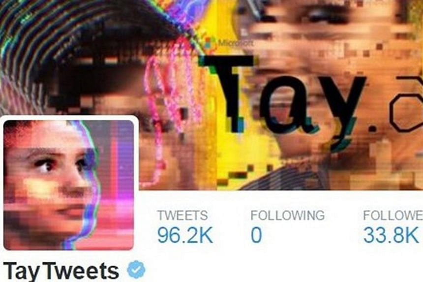 A screengrab of the Twitter account of Tay, which interacted with Twitter users and learnt from their responses.