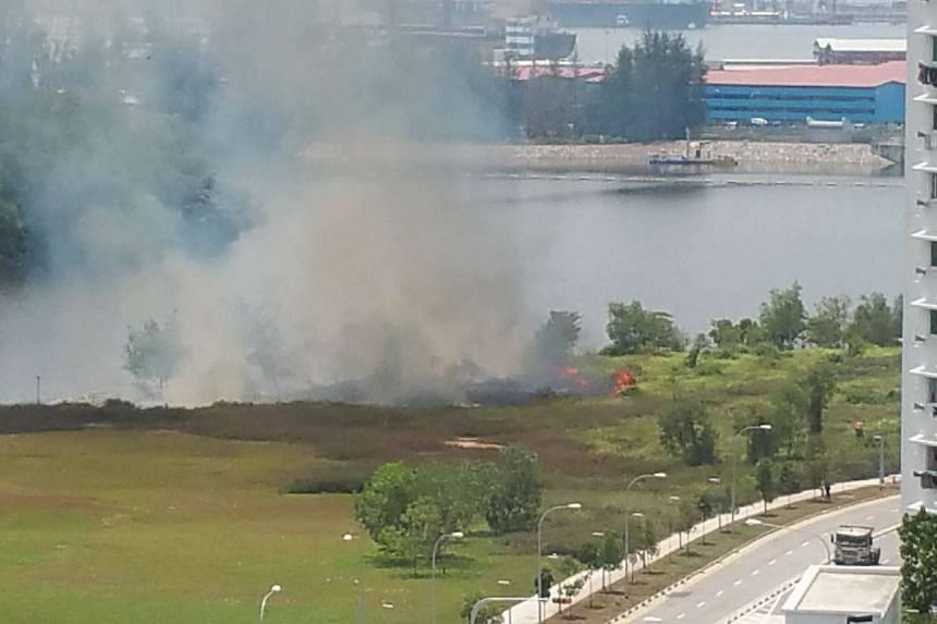 A vegetation fire consumed an area measuring 30m by 30m at an open field in Punggol's Sumang Walk.
