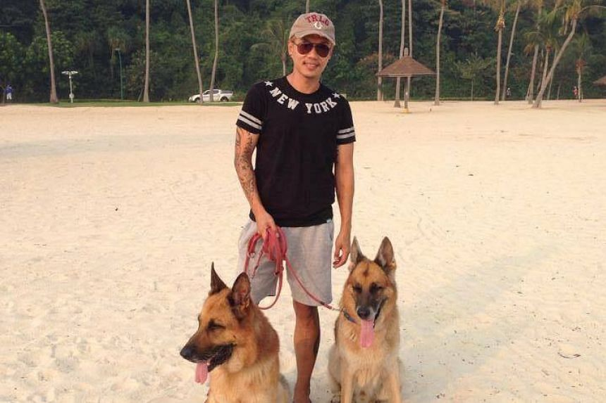 Voices for Animals founder Derrick Tan cared for Sirius after the dog retired, and took Sirius to Sentosa regularly.