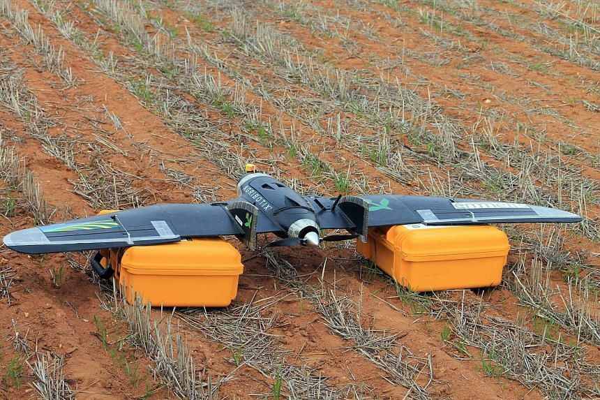 A drone on a farm in Australia. While farmers are fond of drones for covering lots of ground quickly, some have found that the drones are prone to being attacked by eagles - especially during mating season.