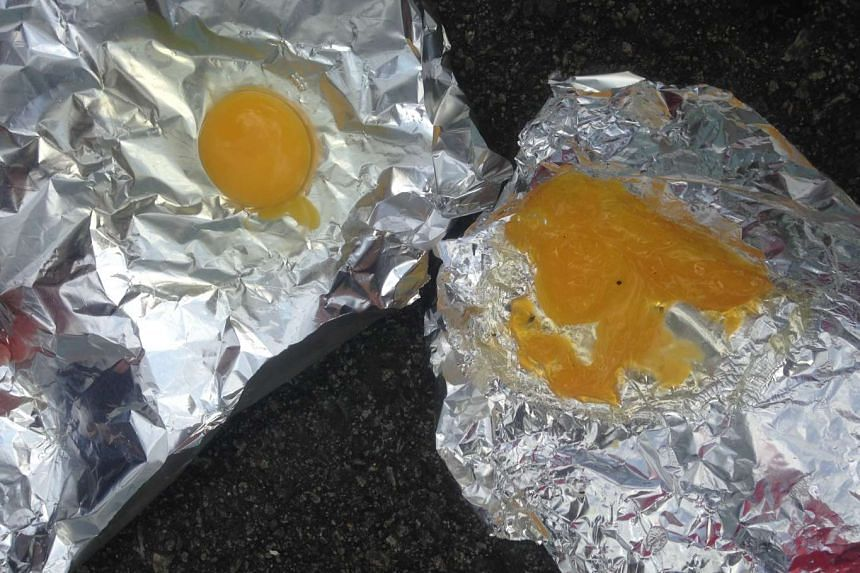A raw egg (left) and one of the eggs after the experiment (right).