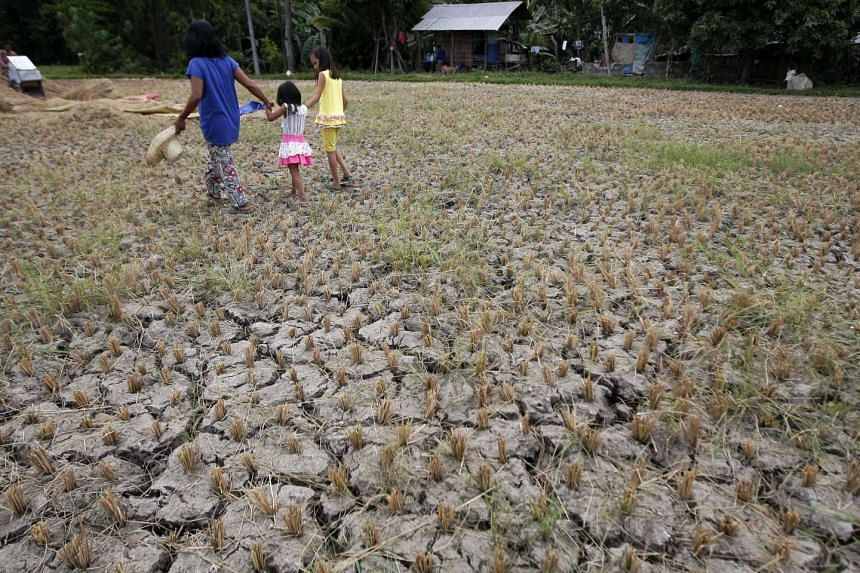 Filipino villagers walking through a drought hit rice field in the town of Asturias, Cebu Island, Philippines, on April 3, 2016.