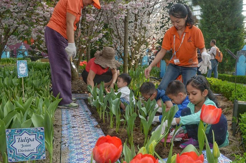 A group of beneficiaries and their families from Children's Cancer Foundation (CCF) join Gardens by the Bay staff and volunteers to put the finishing touches to the Tulipmania floral display in the Flower Dome.
