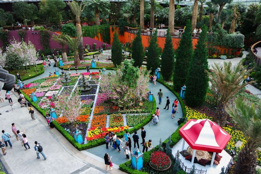 A bird's eye view of the Tulipmania floral display at Gardens by the Bay.