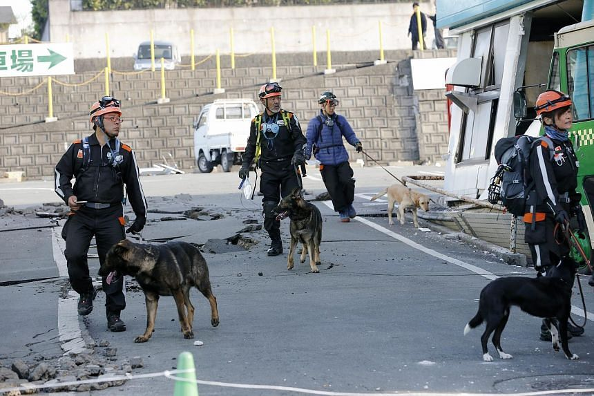 Search and rescue teams with sniffing dogs starting their rescue operation through debris of collapsed houses in Mashiki, Kumamoto Prefecture, south-western Japan, on April 16, 2016.