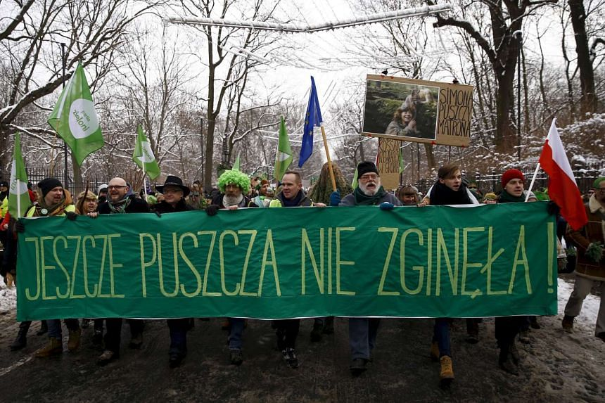 """Environmental activists march in defence of Europe's last ancient forest, the Bialowieza Primeval Forest, in Warsaw, Poland in this Jan 17, 2016 file photo. The banner reads, """"Forest has not yet perished""""."""