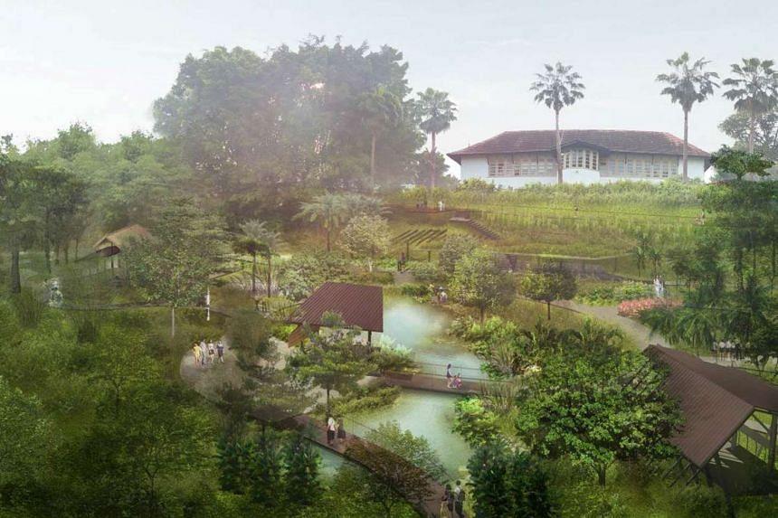 Artist's impression of Ethnobotany Garden.