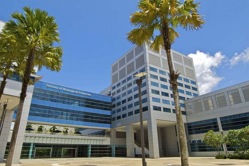 Nanyang Technological University's School of Biological Sciences. NTU has made a steady rise in a global ranking of scientific research by the Nature Publishing Group.