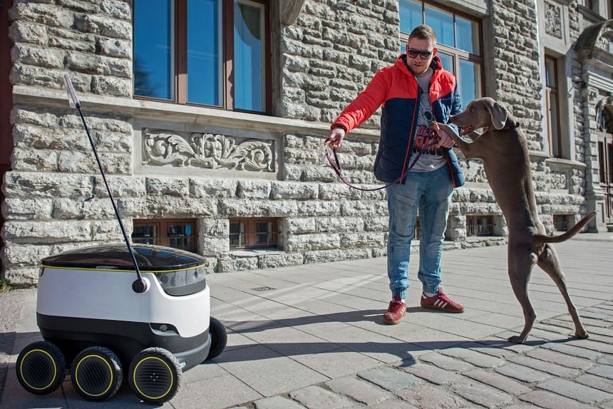 A dog reacting as a prototype self-driving parcel delivery robot, developed by Starship Technologies, travelled along a sidewalk in Tallinn, Estonia, on April 12. The electric-powered robots were developed to help short-range low-cost deliveries and ultim