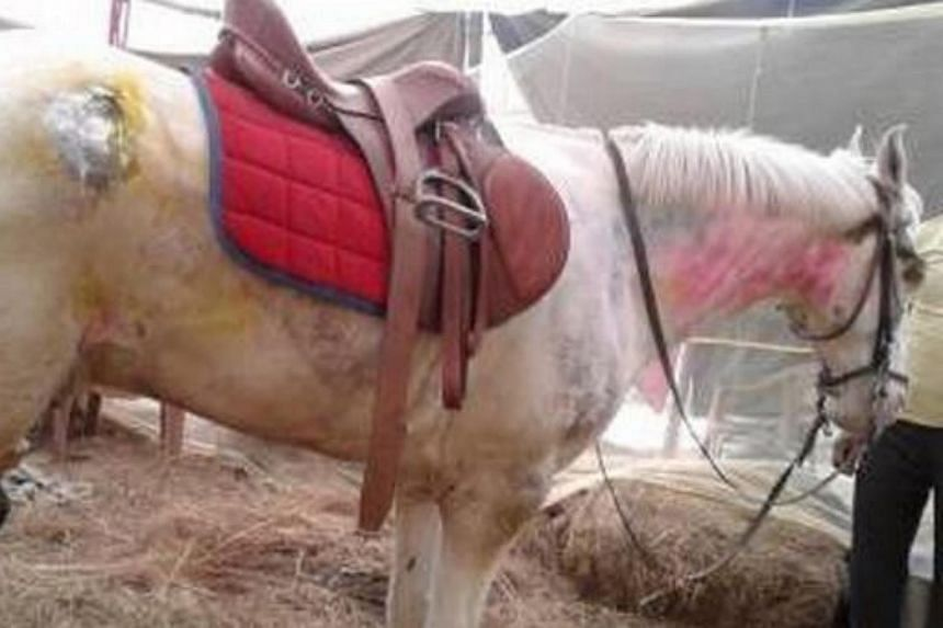 Police horse Shaktiman was buried with full honours after it died, on Wednesday, April 20, 2016.