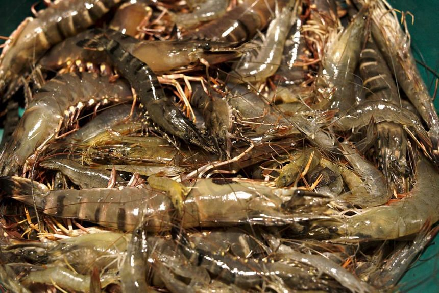 Singapore's Agri-Food and Veterinary Authority has said that it has not detected veterinary drug residues in prawns and shrimps from Malaysia.