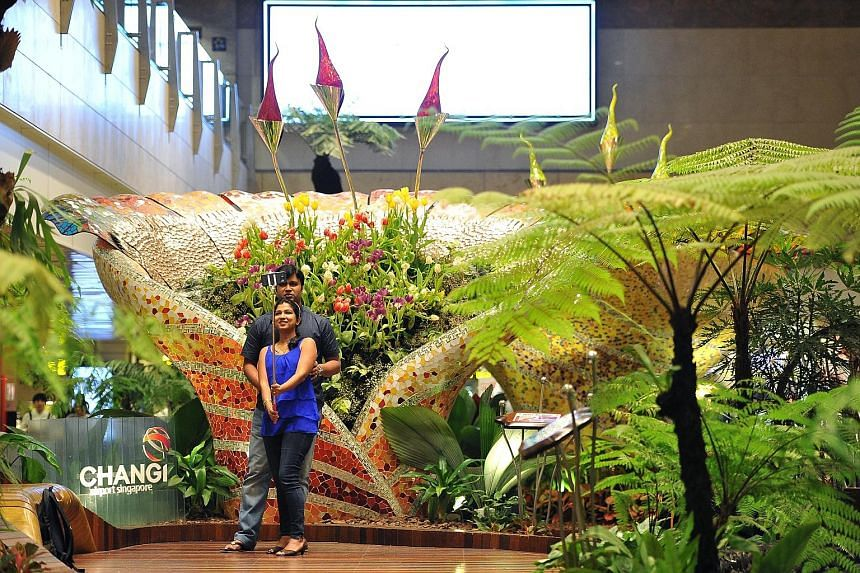 IT trainer Trivikram Baindur, 32, and IT developer Sonal Kini, 29, both tourists from India on transit at Changi Airport, taking a selfie at the tulip display at the airport's Enchanted Garden last week.