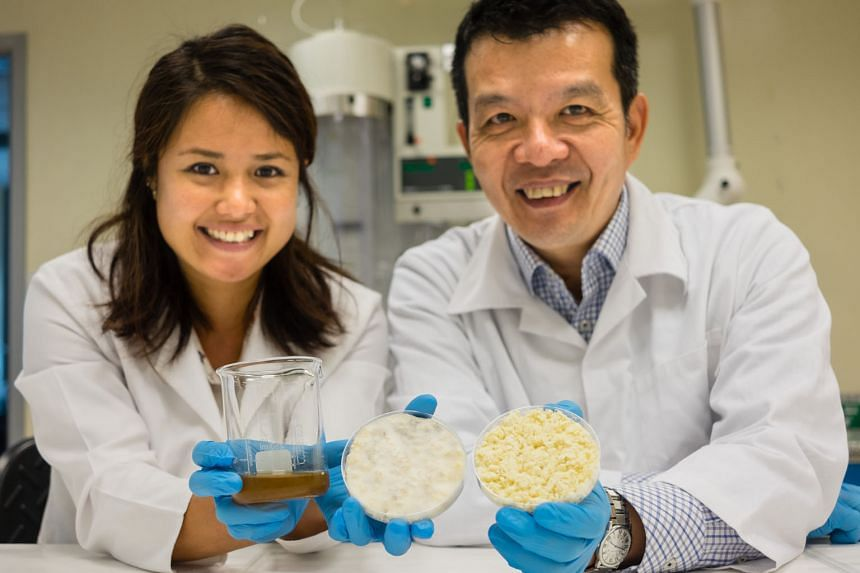 Dr Lee (left) and Prof Chen with the yeast growth medium they developed and samples of soya bean residue. A litre of their culture medium costs just $3.