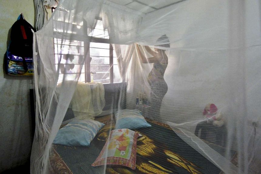 Seven months pregnant Maribel Gomez installs a mosquito net over her bed on Feb 17, 2016, in Cali, Colombia.