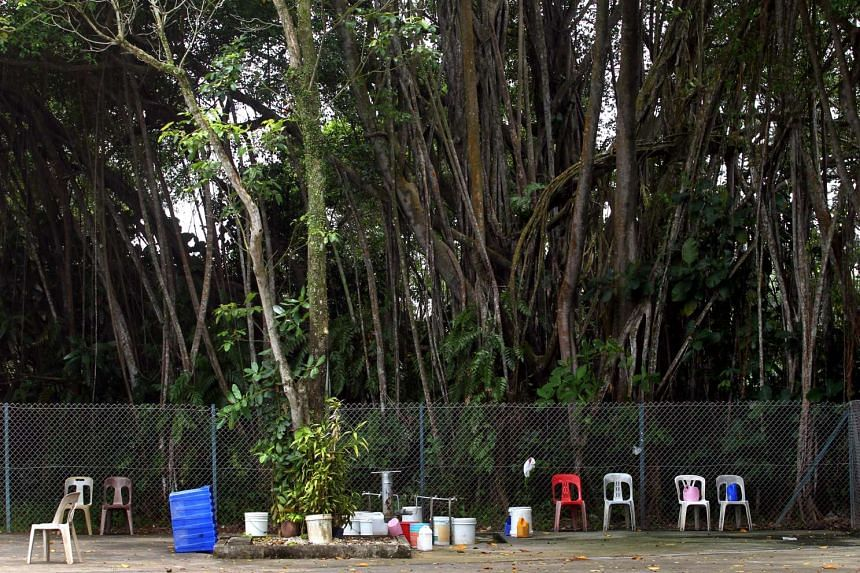 The Sembawang hot spring currently sits inside a military camp.