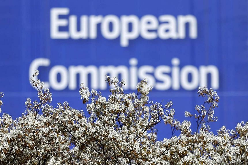 Some European Union finance ministers raised concerns over an European Commission plan to publicly reveal tax and financial data of large companies.