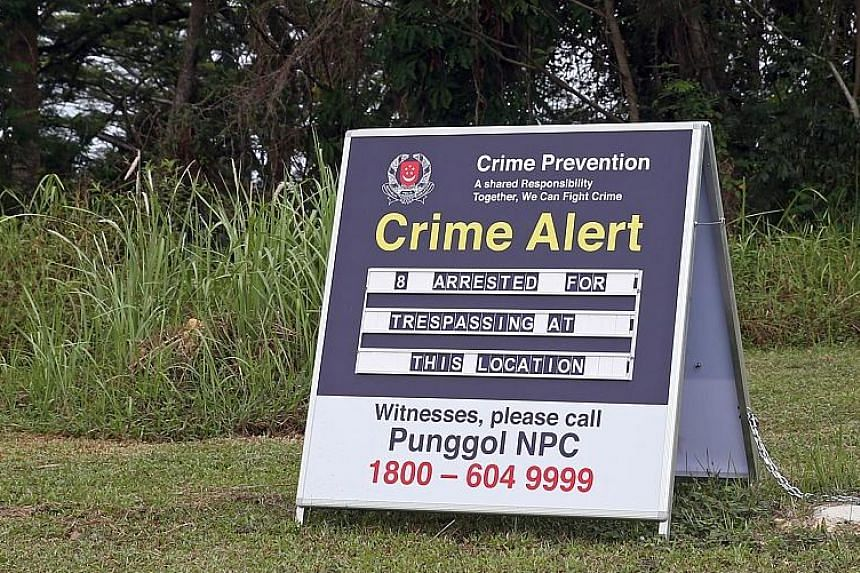 One of the clearings (left) found by The Straits Times on April 17, near the edge of the forested area overlooking Punggol Waterway Park. Women, said to be prostitutes, were seen going up the slope into the clearings at night. The area was cleared of