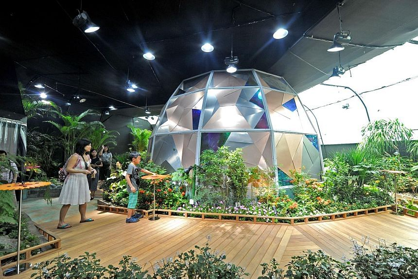 The Science Centre hopes visitors to its butterfly sanctuary will be enchanted by the aerial dynamics of more than 500 of the fragile beauties.