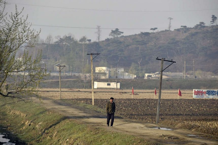 A man walking next to a field in the suburbs of Pyongyang.