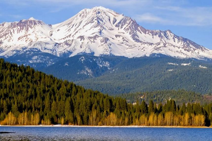 The scenic Mount Shasta, at 4,321m, is the fifth highest peak in California and part of the Shasta-Trinity National Forest.