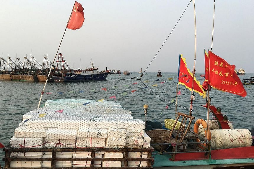 Fishing boats in Baimajing. The fishing fleet based in this Chinese port town on Hainan island is getting everything from military training to subsidies as Beijing creates a fishing militia to sail in the disputed South China Sea.