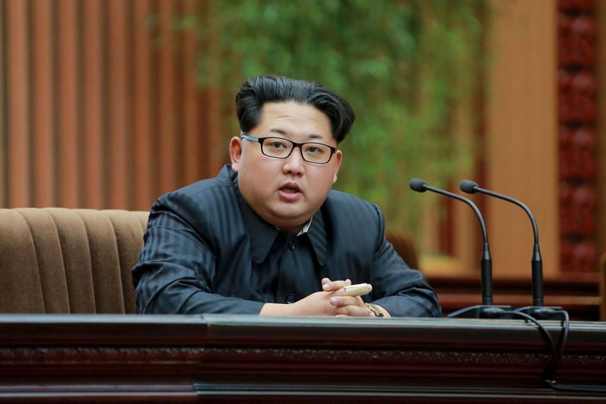 North Korea will stage its biggest political show for a generation, aimed at cementing the absolute rule of leader Kim Jong Un (above).