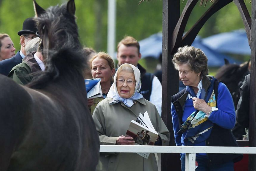 Britain's Queen Elizabeth II observes the competing horses at the Windsor Royal Horse Show, in Windsor, on May 13, 2016.