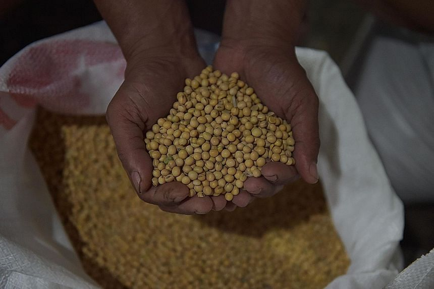 Around 150 small tofu businesses in Kalisari village are benefiting from a green scheme that converts wastewater from their production floors into a clean-burning biogas.