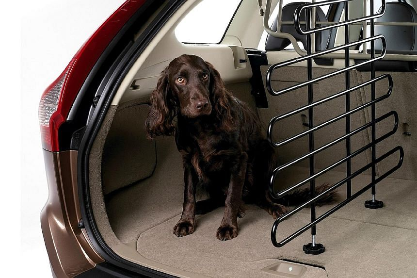 Dogs can travel safely by wearing a harness and seat belt or staying inside a crate or a dog guard (above).