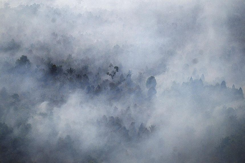 Forest fires near the village of Bokor, Riau, in March this year. NEA has given notices to six Indonesia-based companies, asking them to outline the steps they are taking to put out and prevent fires on their land.