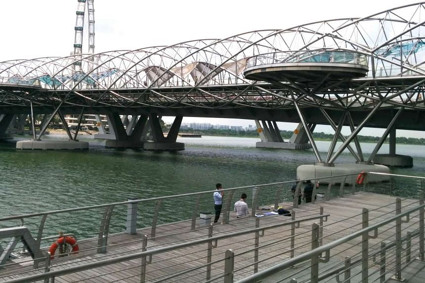 The 49-year-old woman was spotted face down and motionless in the water near the Helix Bridge.