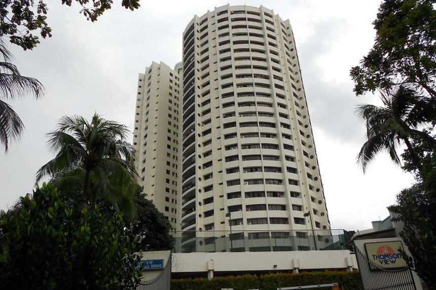 The 99-year leasehold Thomson View Condo is located along Upper Thomson Road.