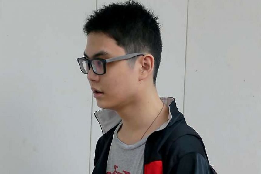 Soh Wei Lin was ordered to undergo two years of mandatory psychiatric treatment in lieu of jail time after he stabbed his brother over a glass of milk.